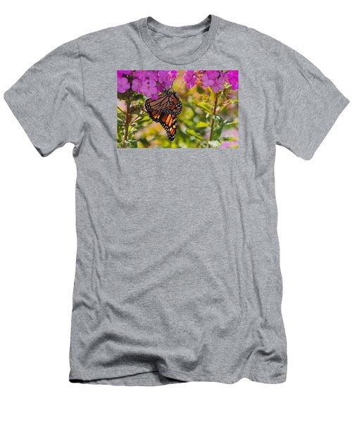 Dangling Monarch   Men's T-Shirt (Athletic Fit)