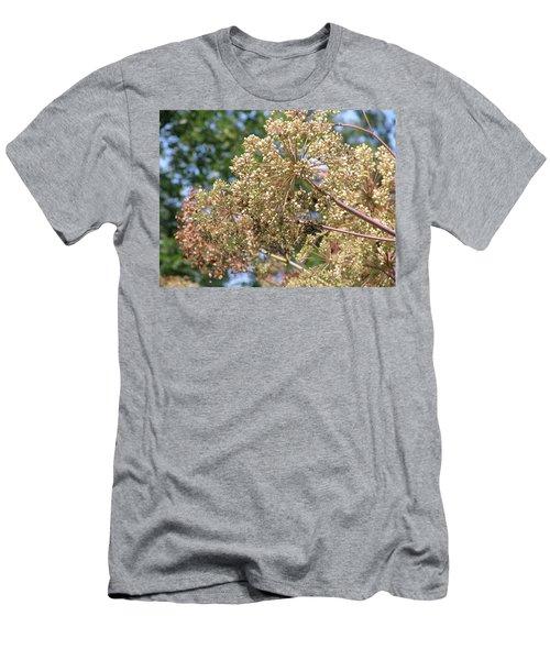 Dazzle Men's T-Shirt (Athletic Fit)