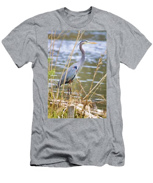 De Leon Springs Blue Men's T-Shirt (Slim Fit) by Deborah Benoit