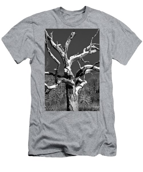 Dead Tree - Uw Arboretum - Madison - Wi Men's T-Shirt (Athletic Fit)