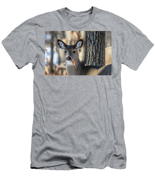 Men's T-Shirt (Slim Fit) featuring the photograph Deer At The Salad Bar by Paul Freidlund
