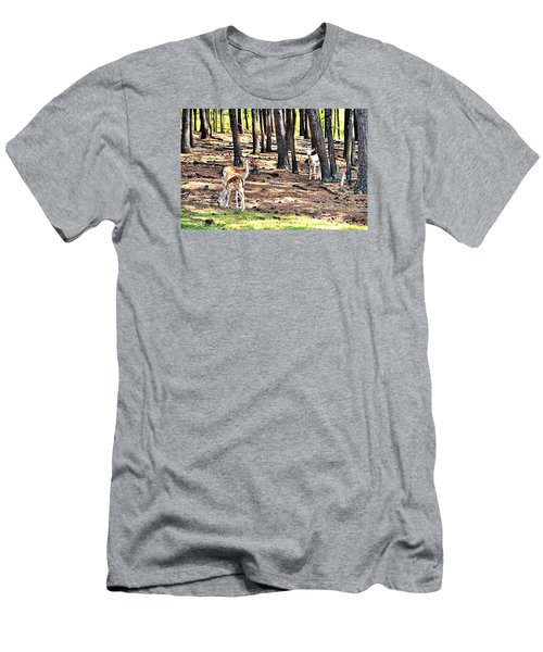 Deer In The Summer Forest Men's T-Shirt (Athletic Fit)