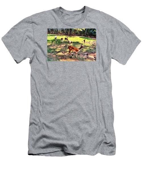 Deerfield Men's T-Shirt (Slim Fit) by James Potts