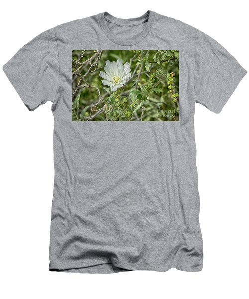 Men's T-Shirt (Slim Fit) featuring the photograph Desert Chicory   Rafinesquia Neomexicana by Anne Rodkin