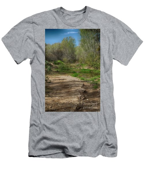 Desert Oasis Men's T-Shirt (Slim Fit) by Anne Rodkin