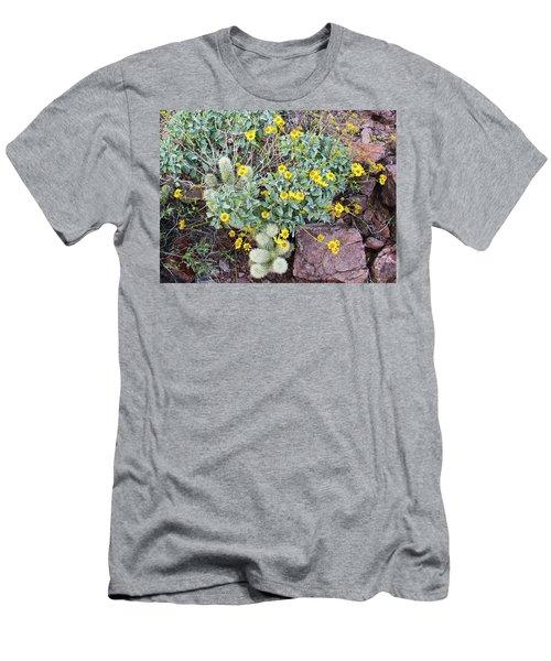 Teddybear Cactus Bouquet Men's T-Shirt (Athletic Fit)
