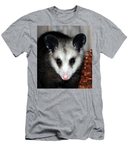 Dining Possums Vii Men's T-Shirt (Athletic Fit)