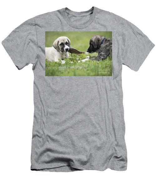 Dinner For Two Men's T-Shirt (Athletic Fit)