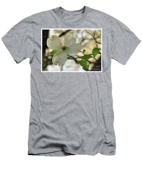 Dogwood Bloom Men's T-Shirt (Athletic Fit)