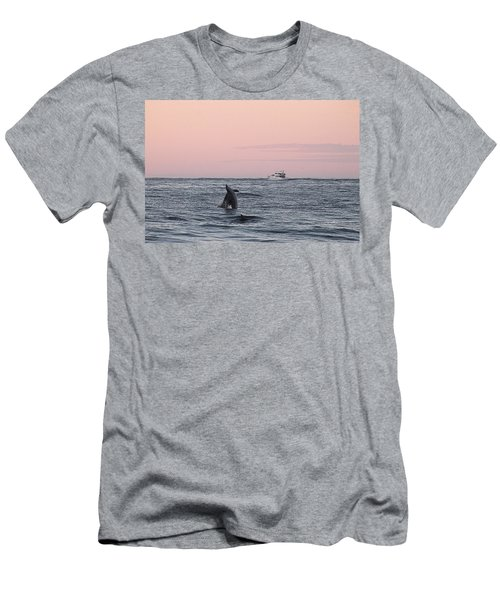 Dolphins At Play Men's T-Shirt (Athletic Fit)