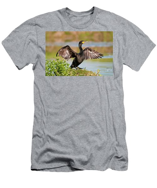 Double-crested Cormorant Men's T-Shirt (Athletic Fit)