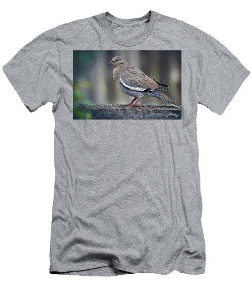 Dove Men's T-Shirt (Athletic Fit)