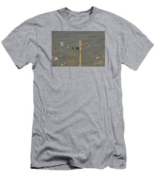 Dragonfly On Old Wood Men's T-Shirt (Athletic Fit)