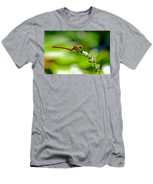 Dragonfly Sitting On Flower Men's T-Shirt (Athletic Fit)