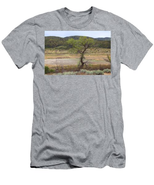 Dried Elizabeth Lake Men's T-Shirt (Athletic Fit)