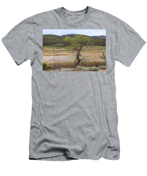 Dried Elizabeth Lake Men's T-Shirt (Athletic Fit)