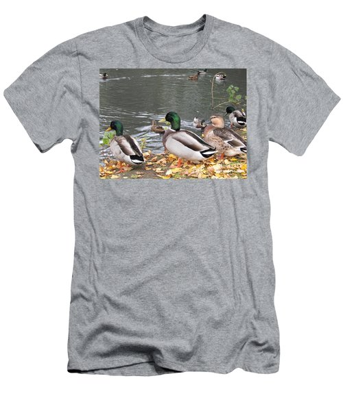 Ducks By The Pond Men's T-Shirt (Athletic Fit)