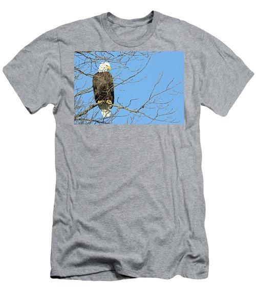 Eagle Men's T-Shirt (Slim Fit) by Brook Burling