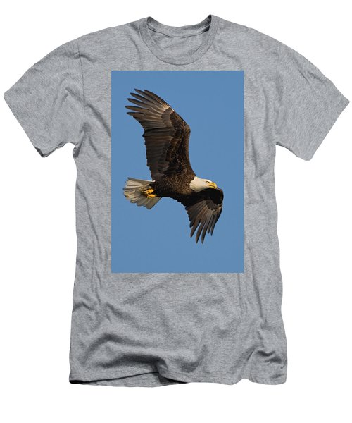 Eagle In Sunlight Men's T-Shirt (Athletic Fit)