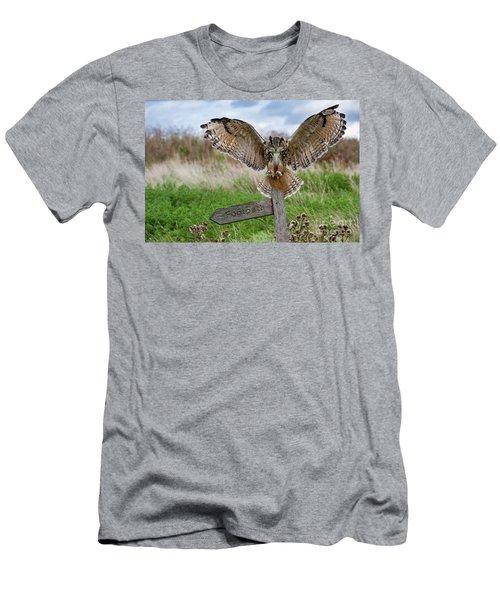 Eagle Owl On Signpost Men's T-Shirt (Athletic Fit)