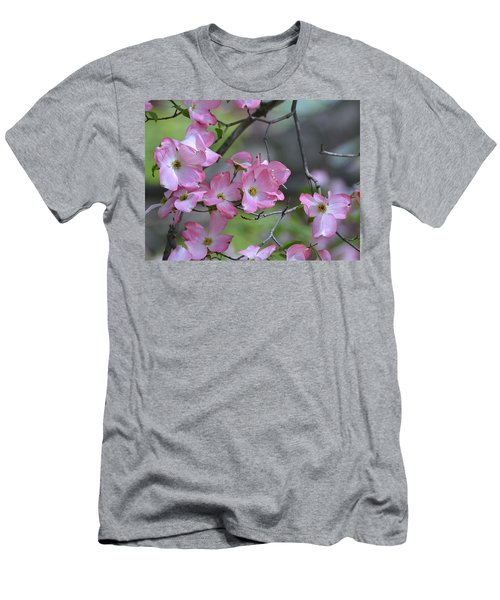 Early Spring Color Men's T-Shirt (Athletic Fit)