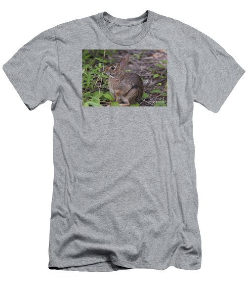 Eastern Cottontail 20120624_11a Men's T-Shirt (Slim Fit) by Tina Hopkins