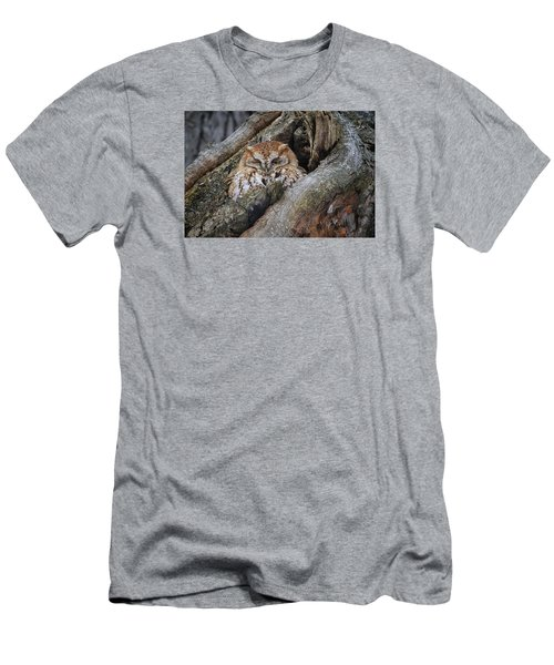 Eastern Screech Owl 2 Men's T-Shirt (Athletic Fit)