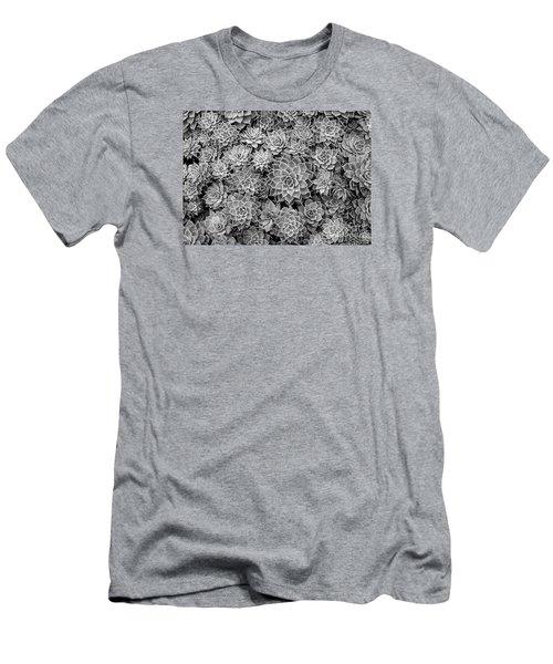 Echeveria Monochrome Men's T-Shirt (Slim Fit) by Ranjini Kandasamy
