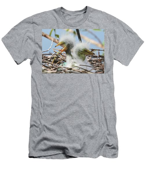 Egret Chicks In Nest With Egg Men's T-Shirt (Athletic Fit)