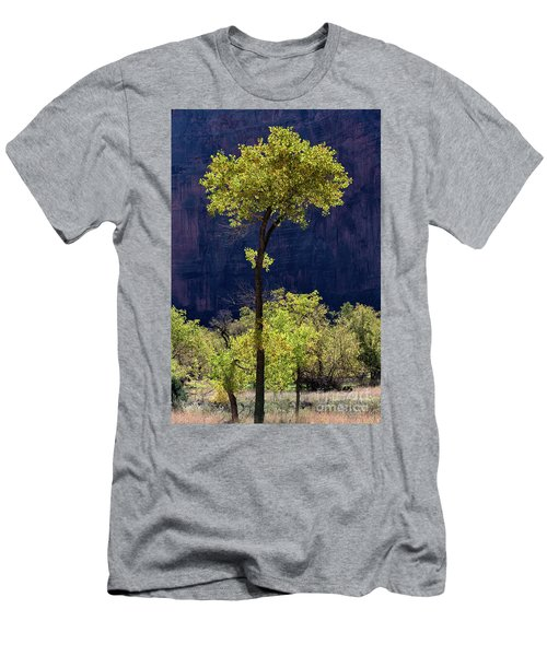 Elegance In The Park Utah Adventure Landscape Photography By Kaylyn Franks Men's T-Shirt (Athletic Fit)