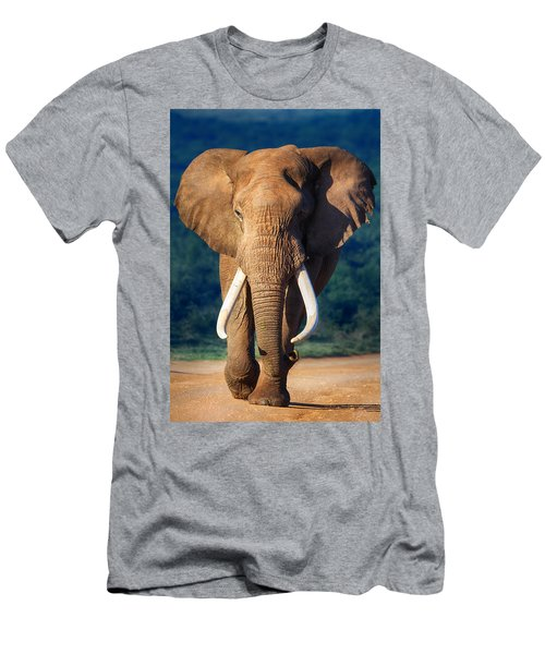 Elephant Approaching Men's T-Shirt (Athletic Fit)