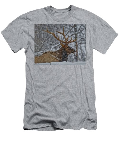 Elk Enjoying The Snow Men's T-Shirt (Athletic Fit)