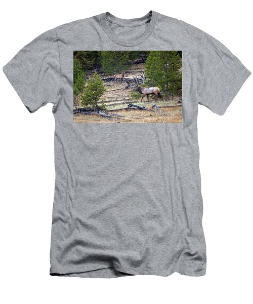 Elk In Yellowstone Men's T-Shirt (Athletic Fit)
