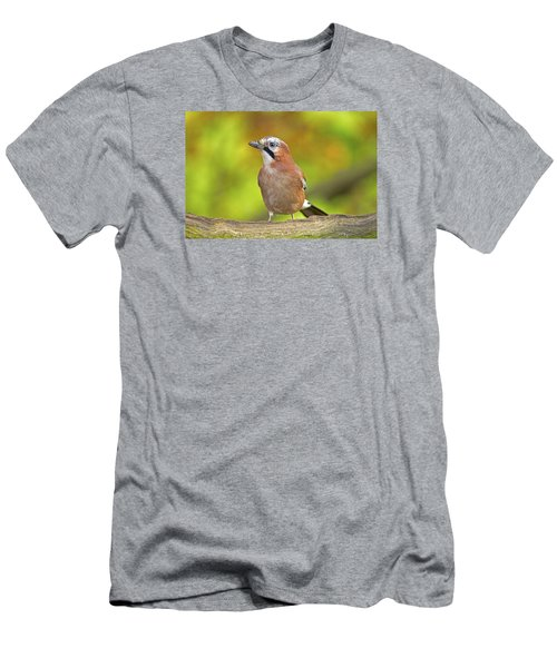 Eurasian Jay Men's T-Shirt (Slim Fit) by Paul Scoullar
