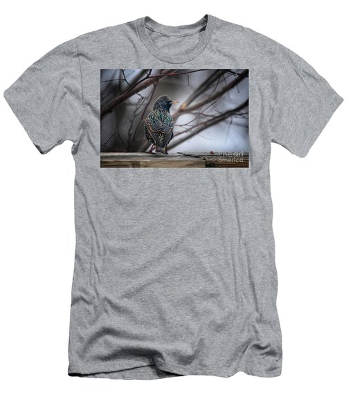 European Starling In Non Breeding Colors Men's T-Shirt (Athletic Fit)