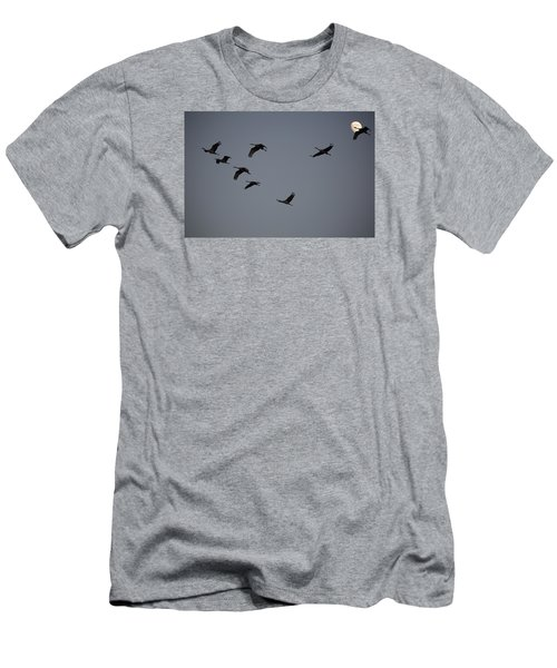 Evening Flight Men's T-Shirt (Athletic Fit)