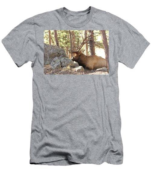Faabattlescarredbull001 Men's T-Shirt (Athletic Fit)
