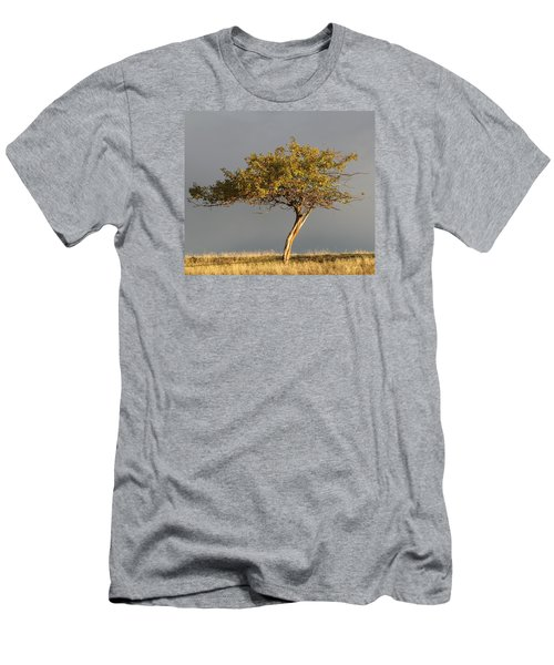 Fall At The Crabapple Tree Men's T-Shirt (Athletic Fit)