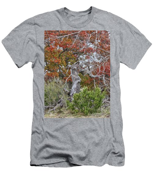 Fall Colors Once Again Men's T-Shirt (Athletic Fit)