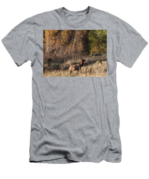 Fall Sunset Satellite Bull Elk II Men's T-Shirt (Athletic Fit)
