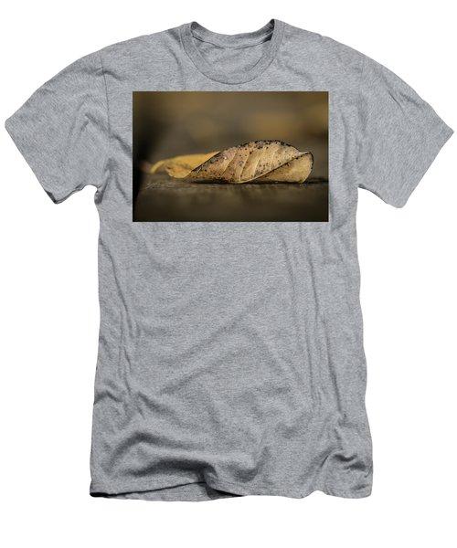 Fallen Leaf Men's T-Shirt (Slim Fit) by Hyuntae Kim