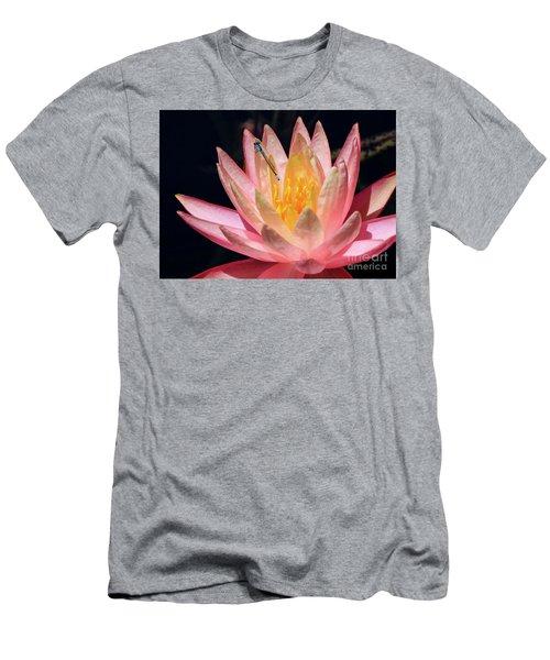Familiar Bluet Damselfly And Lotus 2 Men's T-Shirt (Athletic Fit)