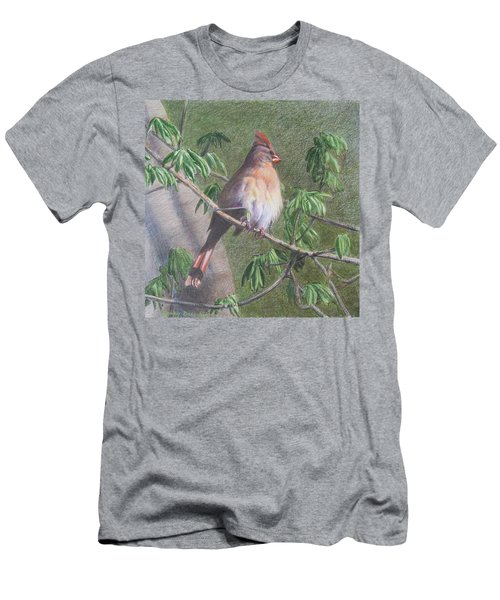 Female Cardinal Men's T-Shirt (Athletic Fit)