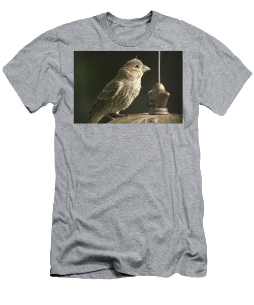 Female House Finch On Feeder Men's T-Shirt (Athletic Fit)