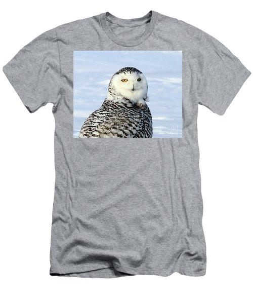 Female Snowy Owl Men's T-Shirt (Athletic Fit)