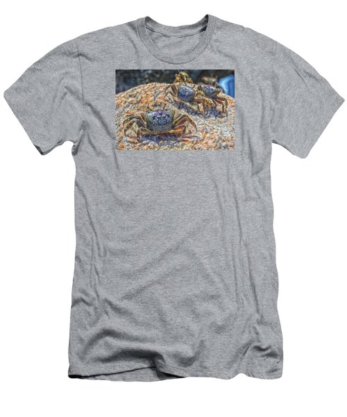 Fiddler Crabs Men's T-Shirt (Athletic Fit)