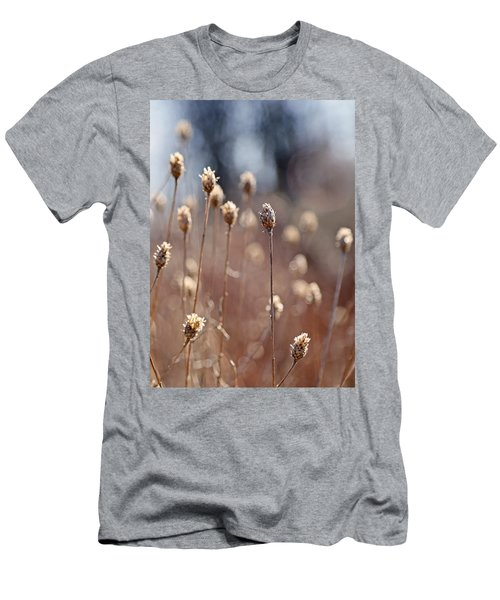 Field Of Dried Flowers In Earth Tones Men's T-Shirt (Athletic Fit)