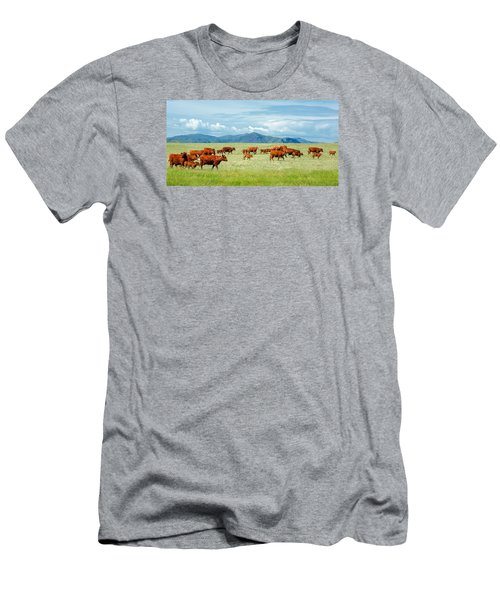 Field Of Reds Men's T-Shirt (Athletic Fit)