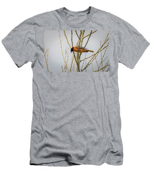 Men's T-Shirt (Athletic Fit) featuring the photograph First Baltimore Oriole Of The Year  by Ricky L Jones
