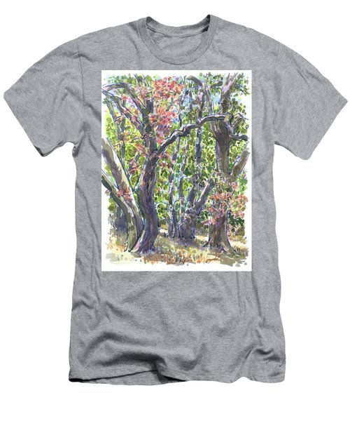 First Fall Colors In The Forest Men's T-Shirt (Athletic Fit)